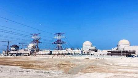 In September last year, Minister of Energy Suhail Al Mazroui had said that the first reactor is 96 per cent complete.