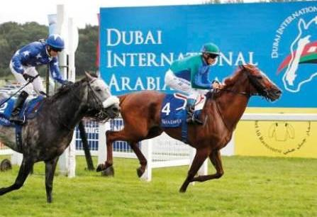 Al Sayegh delights in renewal of sport's biggest event featuring eight races
